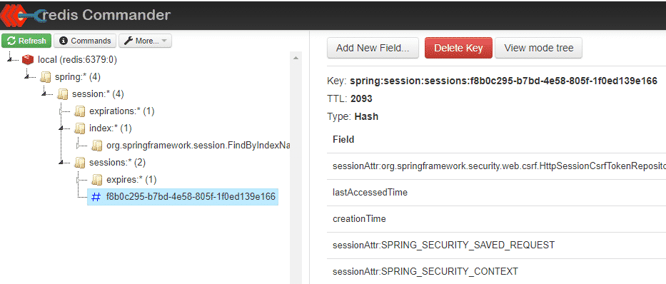 spring session information in redis database
